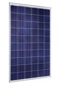 Модул: Sunmodule+ SW 240 Poly